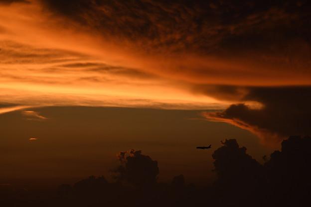 夕焼けを飛ぶ