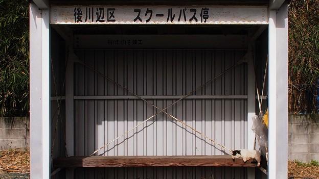 Photos: 待ち時間