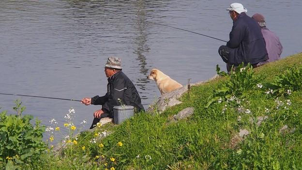 釣れるかな~