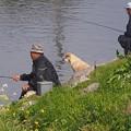 Photos: 釣れるかな~