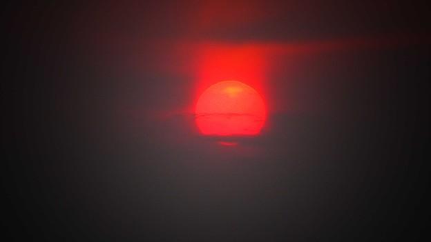 Photos: 太陽は燃えている