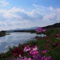 Photos: 川沿いの道