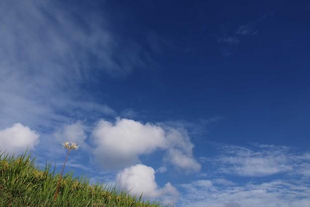お~い 空よ雲よ
