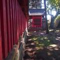 Photos: 神社の昼下り