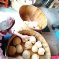 0513_味噌玉を作り混ぜる