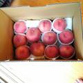 Photos: 0726_先生に送る桃
