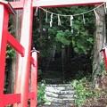 写真: 0827_神様の入り口