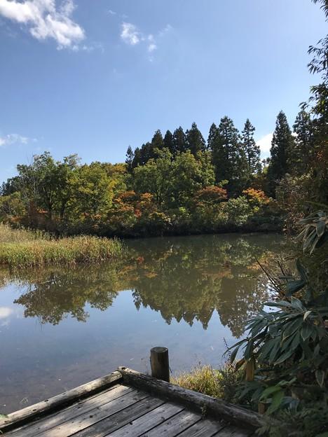 1021_なべくら高原の池