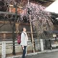0222_湯島神社梅祭り