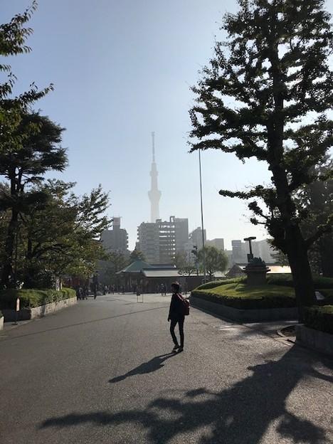 Photos: 1030_浅草寺の朝、境内のアヤベー