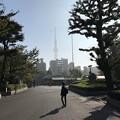 1030_浅草寺の朝、境内のアヤベー