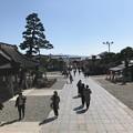 Photos: 0318_参道