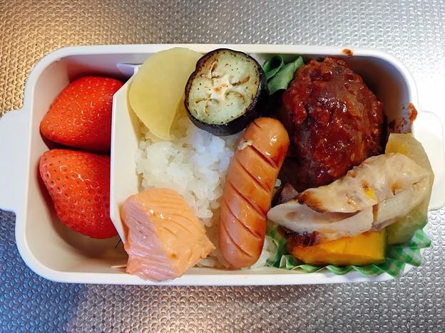 Photos: 0424_アヤベーのお弁当