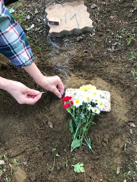 Photos: 1018_ナビさん埋葬