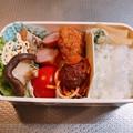 Photos: 0220_アヤベーのお弁当