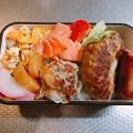 0224_チャリ弁・冷凍ハンバーグ