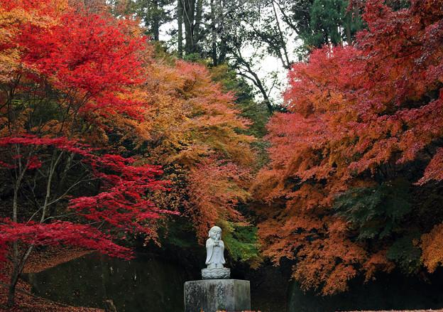 Photos: 紅葉地蔵