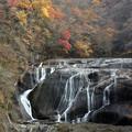 Photos: 流れ無き滝