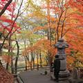 Photos: 奥の坂道w