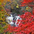 Photos: 16年前の生瀬滝