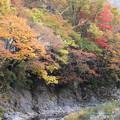 Photos: 紅葉湯西川渓谷