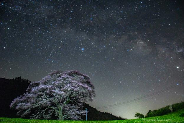 水目桜と天の川と流星