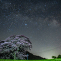 Photos: 水目桜と天の川と流星