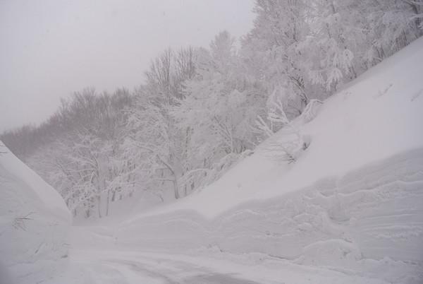 雪国では普通の景色でしょうが一つひとつに感動