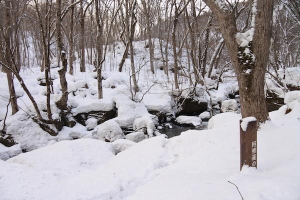 雪の阿修羅の流れ