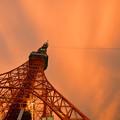 写真: 夕方の東京タワー