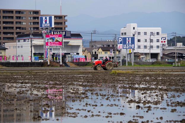 Photos: 田植えの準備