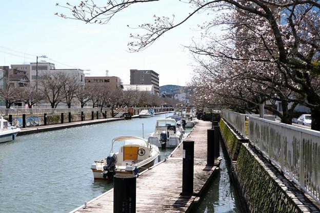 堀川のボート