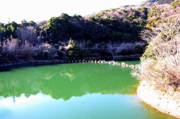 鎌井谷ダム