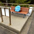 Photos: ベンチで休むココロちゃん