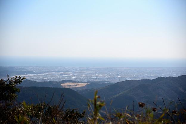 森林公園から南方向の眺め