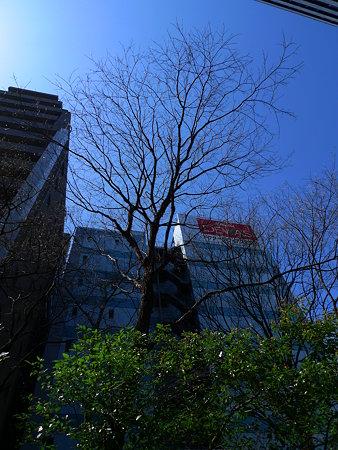 20090330_13