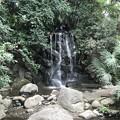 写真: 名主の滝公園