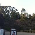 Photos: 松江城