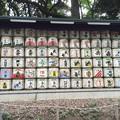 Photos: 明治神宮