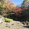 Photos: 小石川後楽園002
