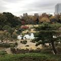 Photos: 六義園 010
