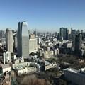Photos: 東京タワー1