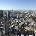 Photos: 東京タワー3