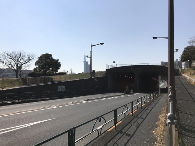 瑞光トンネル