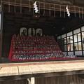 Photos: 素戔嗚神社