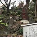 写真: 富士神社