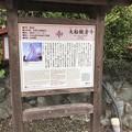Photos: 大船観音寺