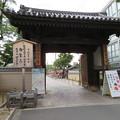 Photos: 四天王寺