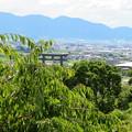 Photos: 大美和の杜展望台
