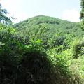 Photos: 笠置山